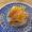 帰ってきたくら寿司の「ゆず漬けはまち」は何故美味いのか
