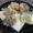 岡山の回転寿司「悠喜」にはアレの天ぷらがある!